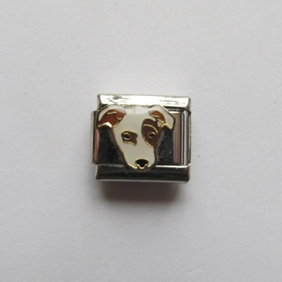 Italian Charms mit Hund Motiv ( Jack Russell Terrier)